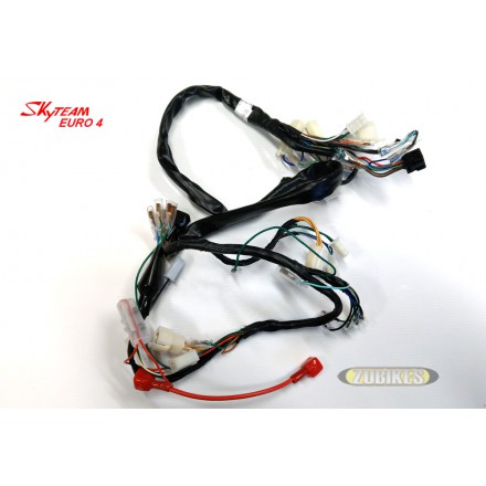 Faisceau électrique Dax injection Skyteam E4