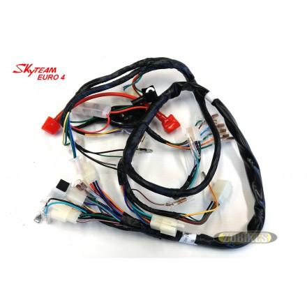 Faisceau électrique T Rex injection Skyteam E4